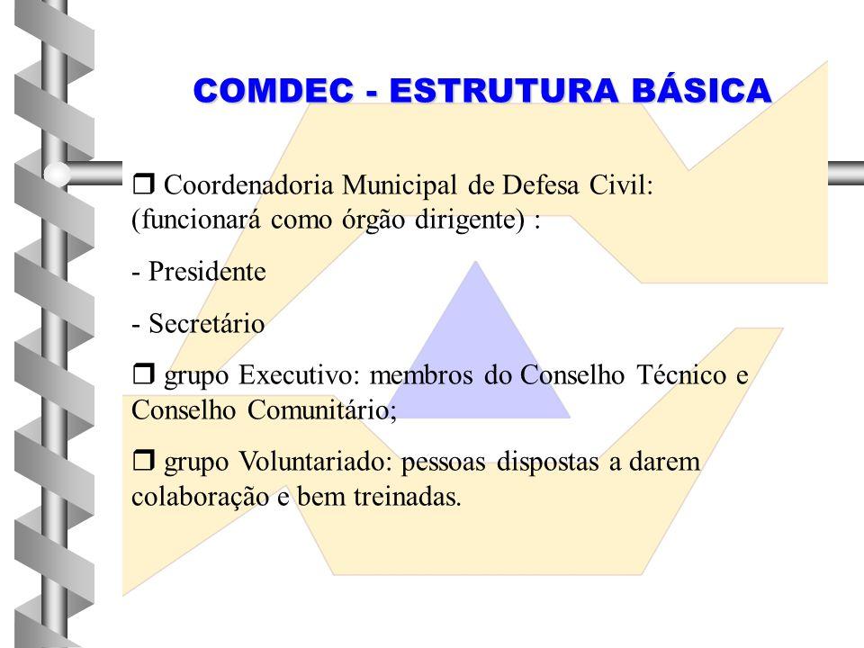  Coordenadoria Municipal de Defesa Civil: (funcionará como órgão dirigente) : - Presidente - Secretário  grupo Executivo: membros do Conselho Técnic