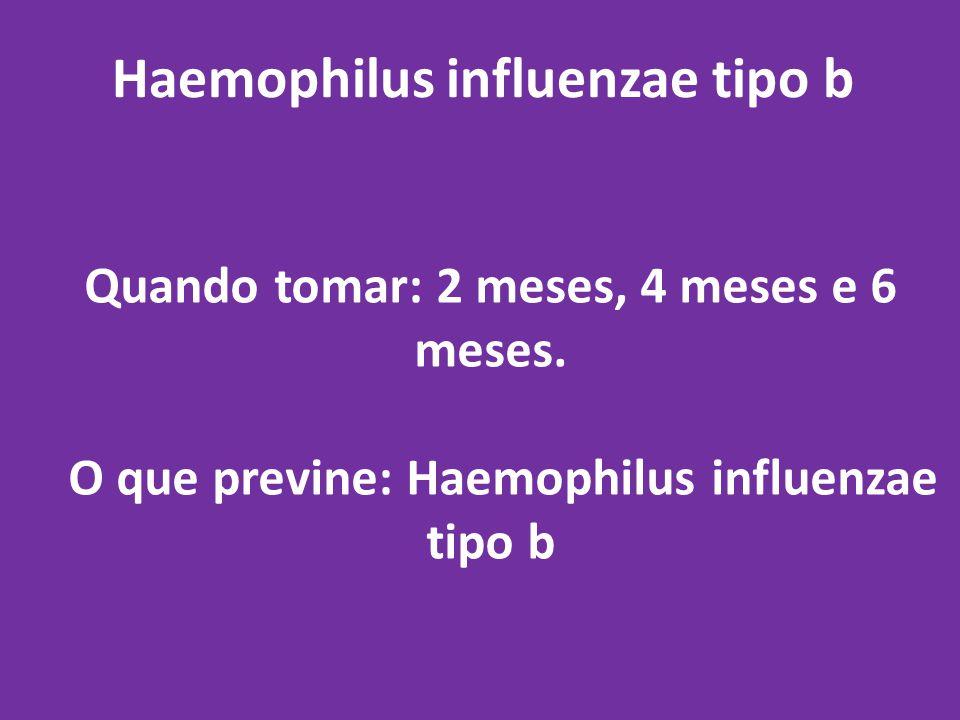Haemophilus influenzae tipo b Quando tomar: 2 meses, 4 meses e 6 meses. O que previne: Haemophilus influenzae tipo b