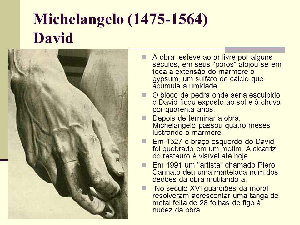 Michelangelo (1475-1564) David  A obra esteve ao ar livre por alguns séculos, em seus poros alojou-se em toda a extensão do mármore o gypsum, um sulfato de cálcio que acumula a umidade.