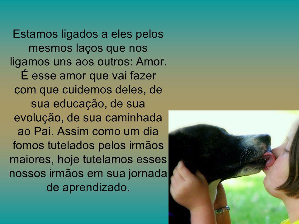 Autor PPS:Carlos Alberto de Oliveira