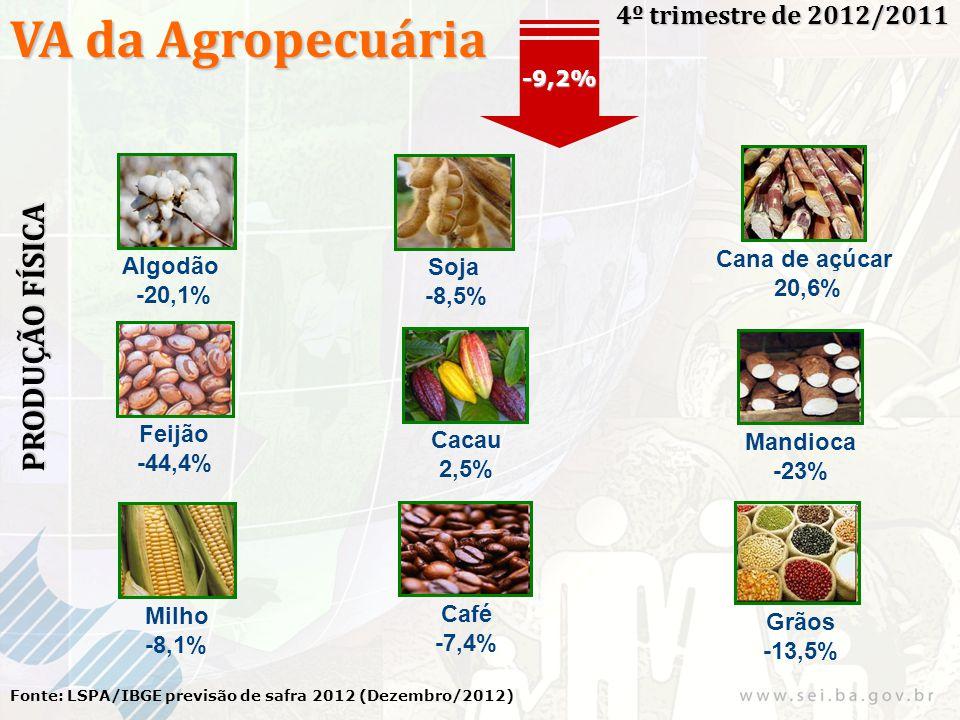 VA da Agropecuária 4º trimestre de 2012/2011 Fonte: LSPA/IBGE previsão de safra 2012 (Dezembro/2012) -9,2% PRODUÇÃO FÍSICA Algodão -20,1% Soja -8,5% C