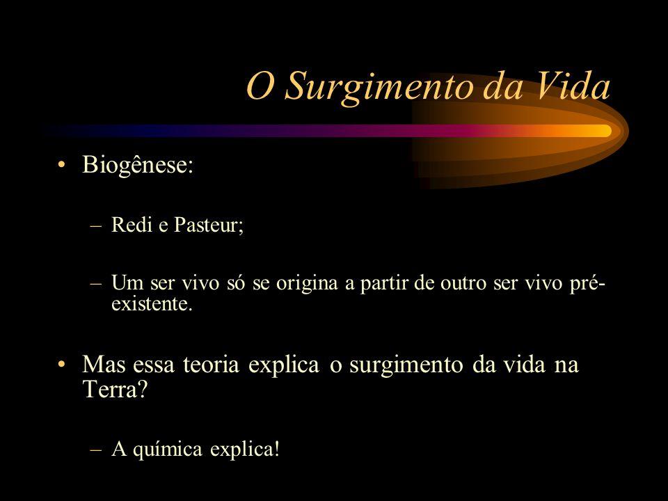 O Surgimento da Vida •Biogênese: –Redi e Pasteur; –Um ser vivo só se origina a partir de outro ser vivo pré- existente. •Mas essa teoria explica o sur