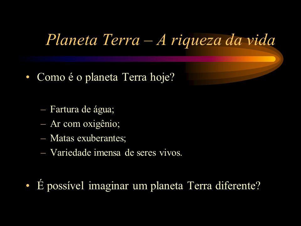 Planeta Terra – A riqueza da vida •Como é o planeta Terra hoje? –Fartura de água; –Ar com oxigênio; –Matas exuberantes; –Variedade imensa de seres viv