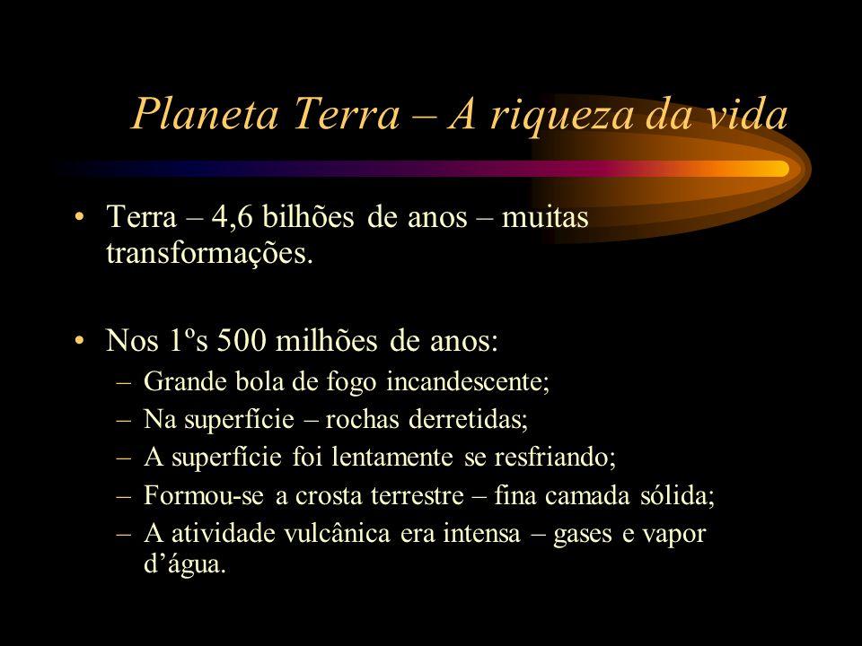 Planeta Terra – A riqueza da vida •Terra – 4,6 bilhões de anos – muitas transformações. •Nos 1ºs 500 milhões de anos: –Grande bola de fogo incandescen