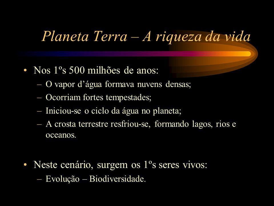 Planeta Terra – A riqueza da vida •Nos 1ºs 500 milhões de anos: –O vapor d'água formava nuvens densas; –Ocorriam fortes tempestades; –Iniciou-se o cic