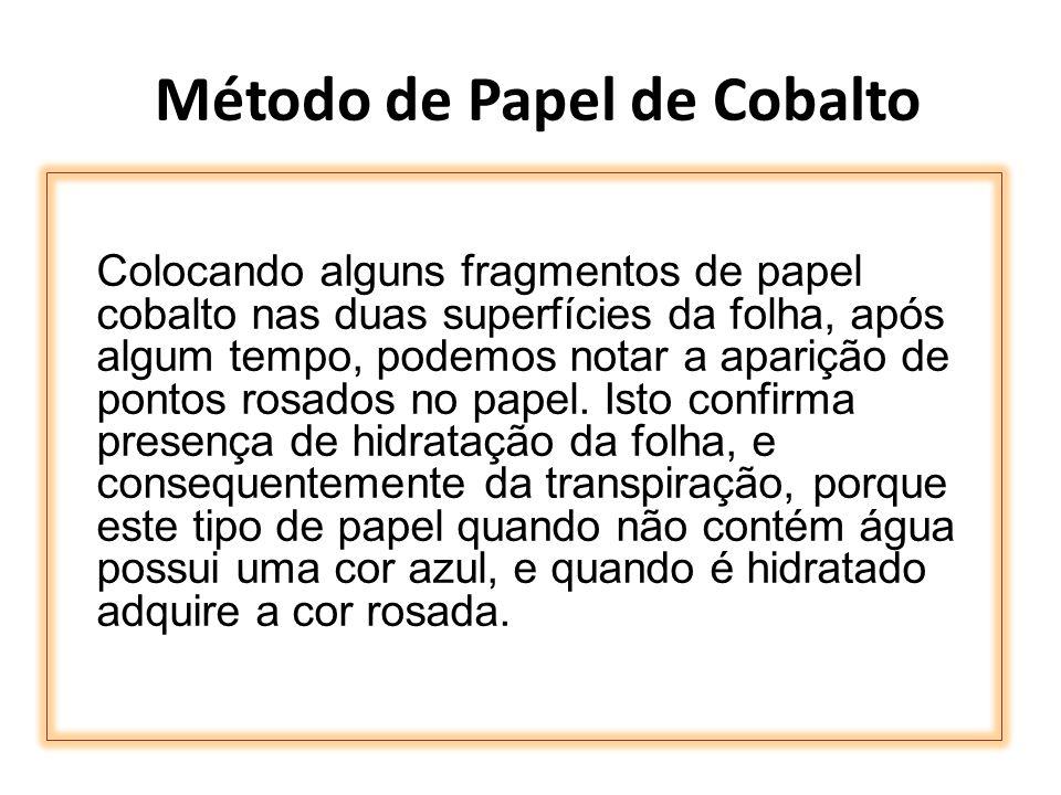 Método de Papel de Cobalto Colocando alguns fragmentos de papel cobalto nas duas superfícies da folha, após algum tempo, podemos notar a aparição de p