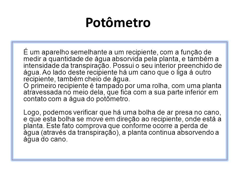 Potômetro É um aparelho semelhante a um recipiente, com a função de medir a quantidade de água absorvida pela planta, e também a intensidade da transp