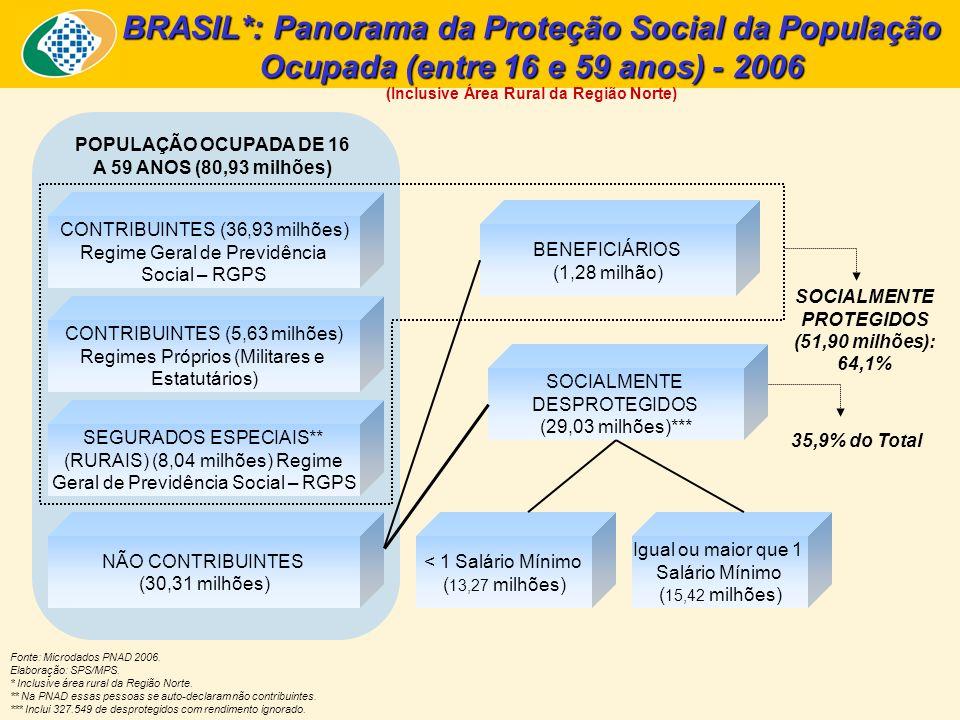 BRASIL*: Panorama da Proteção Social da População Ocupada (entre 16 e 59 anos) - 2006 (Inclusive Área Rural da Região Norte) Fonte: Microdados PNAD 20