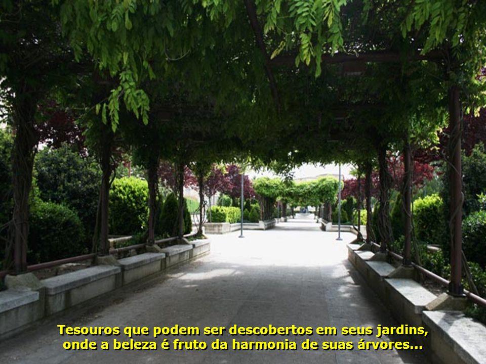 Tesouros que podem ser descobertos em seus jardins, onde a beleza é fruto da harmonia de suas árvores...