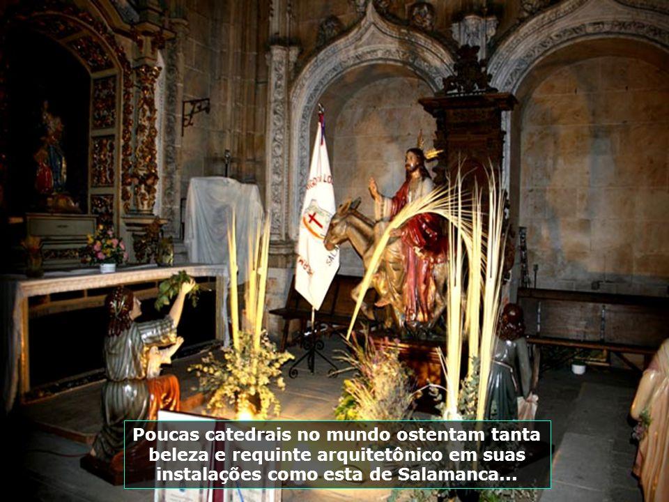 Poucas catedrais no mundo ostentam tanta beleza e requinte arquitetônico em suas instalações como esta de Salamanca...