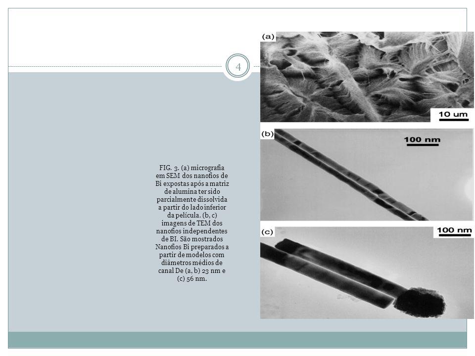 FIG. 3. (a) micrografia em SEM dos nanofios de Bi expostas após a matriz de alumina ter sido parcialmente dissolvida a partir do lado inferior da pelí