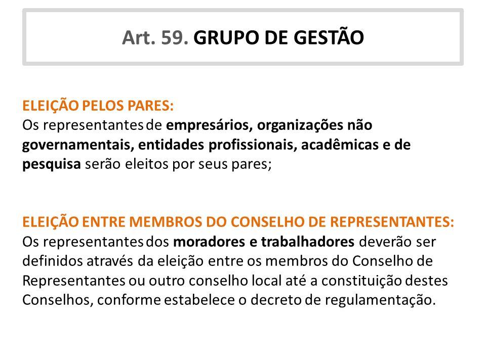 Art. 59. GRUPO DE GESTÃO ELEIÇÃO PELOS PARES: Os representantes de empresários, organizações não governamentais, entidades profissionais, acadêmicas e