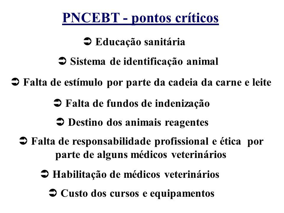  Educação sanitária PNCEBT - pontos críticos  Sistema de identificação animal  Falta de estímulo por parte da cadeia da carne e leite  Falta de fu