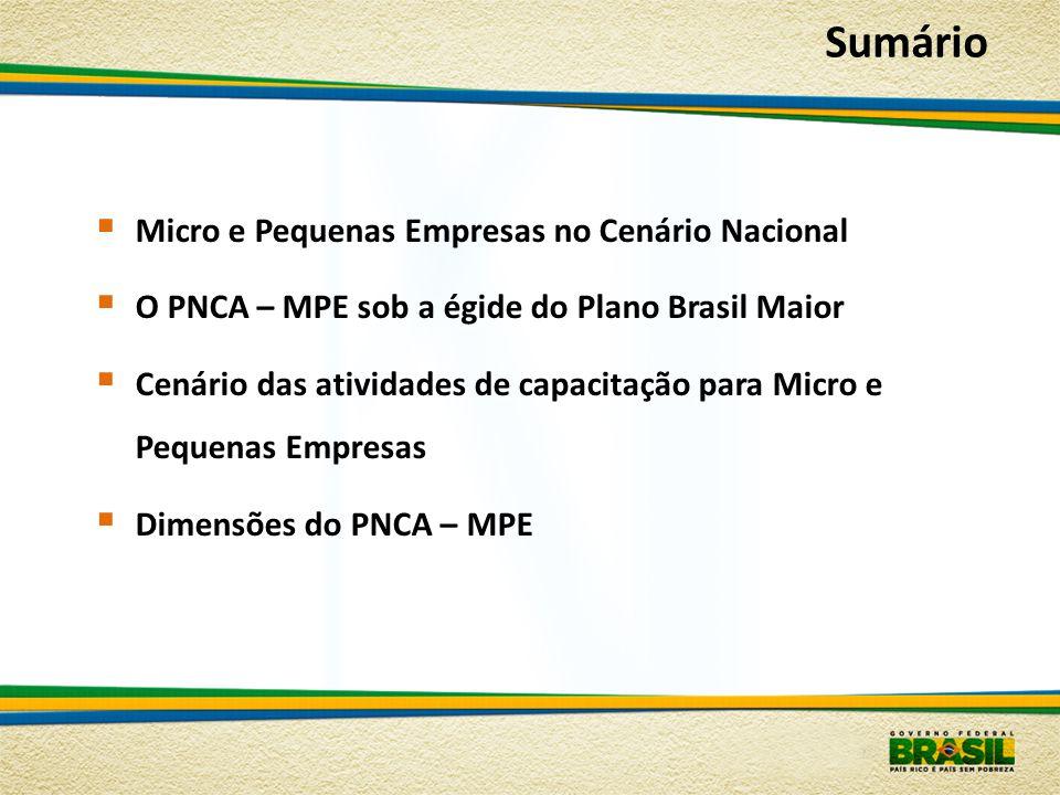  Micro e Pequenas Empresas no Cenário Nacional  O PNCA – MPE sob a égide do Plano Brasil Maior  Cenário das atividades de capacitação para Micro e