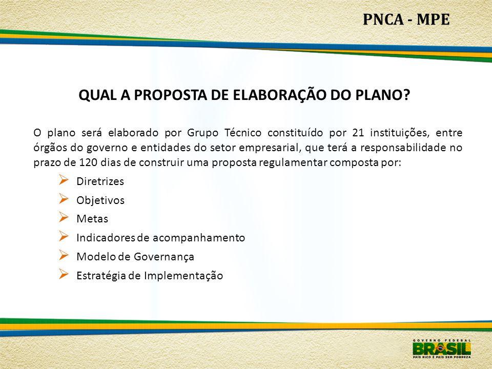 PNCA - MPE O plano será elaborado por Grupo Técnico constituído por 21 instituições, entre órgãos do governo e entidades do setor empresarial, que ter