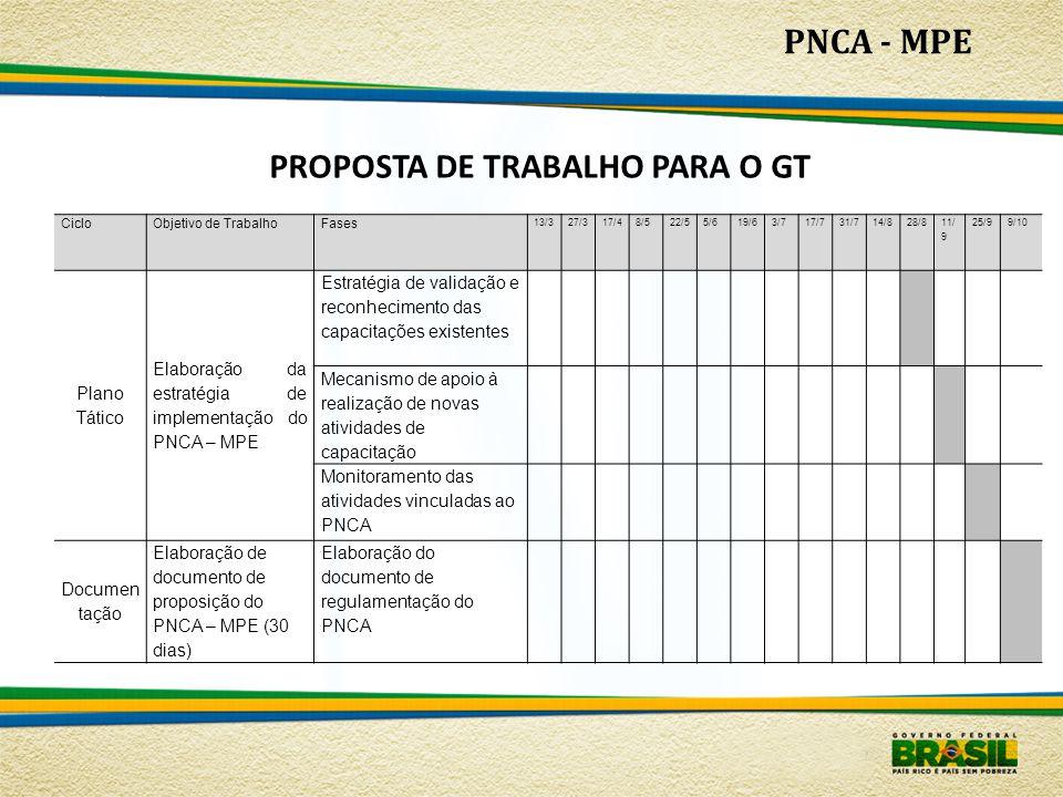 PNCA - MPE PROPOSTA DE TRABALHO PARA O GT CicloObjetivo de TrabalhoFases 13/327/317/48/522/55/619/63/717/731/714/828/8 11/ 9 25/99/10 Plano Tático Ela