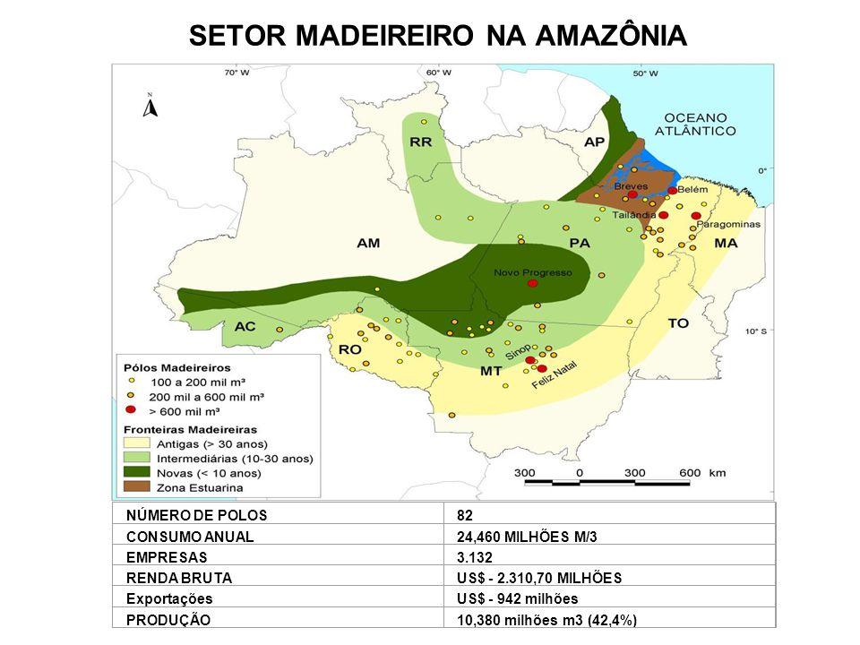 SETOR MADEIREIRO NA AMAZÔNIA NÚMERO DE POLOS82 CONSUMO ANUAL24,460 MILHÕES M/3 EMPRESAS3.132 RENDA BRUTAUS$ - 2.310,70 MILHÕES ExportaçõesUS$ - 942 mi