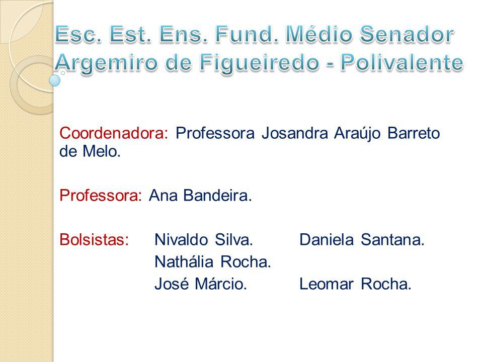 Coordenadora: Professora Josandra Araújo Barreto de Melo.