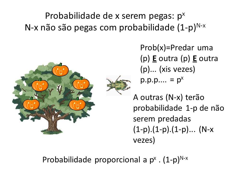 Probabilidade de x serem pegas: p x N-x não são pegas com probabilidade (1-p) N-x Prob(x)=Predar uma (p) E outra (p) E outra (p)... (xis vezes) p.p.p.