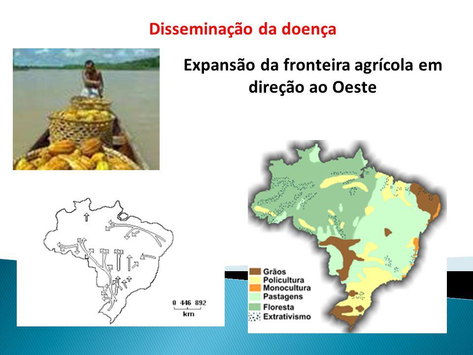 Expansão da fronteira agrícola em direção ao Oeste Disseminação da doença