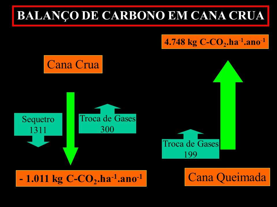 BALANÇO DE CARBONO EM CANA CRUA Cana Queimada 4.748 kg C-CO 2.ha -1.ano -1 Cana Crua - 1.011 kg C-CO 2.ha -1.ano -1 Troca de Gases 300 Troca de Gases 199 Sequetro 1311