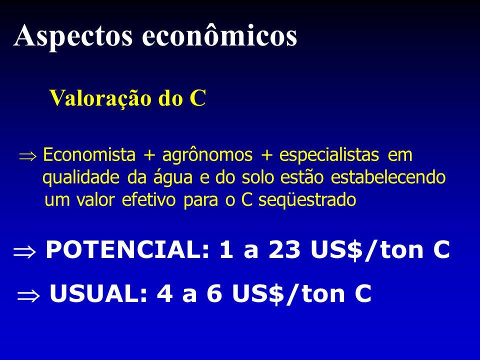 Valoração do C Aspectos econômicos  Economista + agrônomos + especialistas em qualidade da água e do solo estão estabelecendo um valor efetivo para o C seqüestrado  POTENCIAL: 1 a 23 US$/ton C  USUAL: 4 a 6 US$/ton C