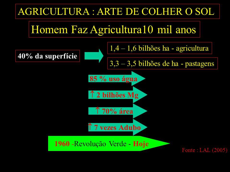 AGRICULTURA : ARTE DE COLHER O SOL Homem Faz Agricultura10 mil anos 40% da superfície  70% área 1,4 – 1,6 bilhões ha - agricultura 3,3 – 3,5 bilhões de ha - pastagens  7 vezes Adubo  2 bilhões Mg 1960 -Revolução Verde - Hoje 85 % uso água Fonte : LAL (2005)