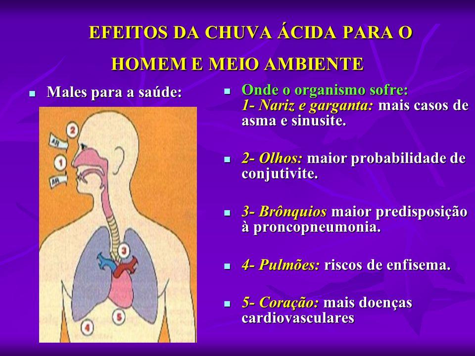 EFEITOS DA CHUVA ÁCIDA PARA O HOMEM E MEIO AMBIENTE  Males para a saúde:  Onde o organismo sofre: 1- Nariz e garganta: mais casos de asma e sinusite
