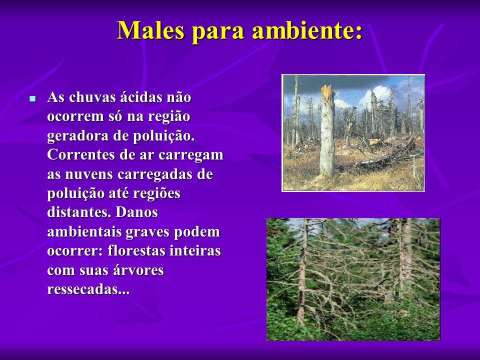 Males para ambiente:  As chuvas ácidas não ocorrem só na região geradora de poluição. Correntes de ar carregam as nuvens carregadas de poluição até r