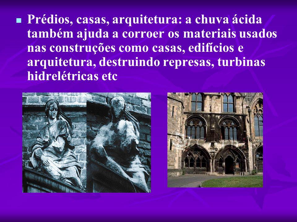   Prédios, casas, arquitetura: a chuva ácida também ajuda a corroer os materiais usados nas construções como casas, edifícios e arquitetura, destrui