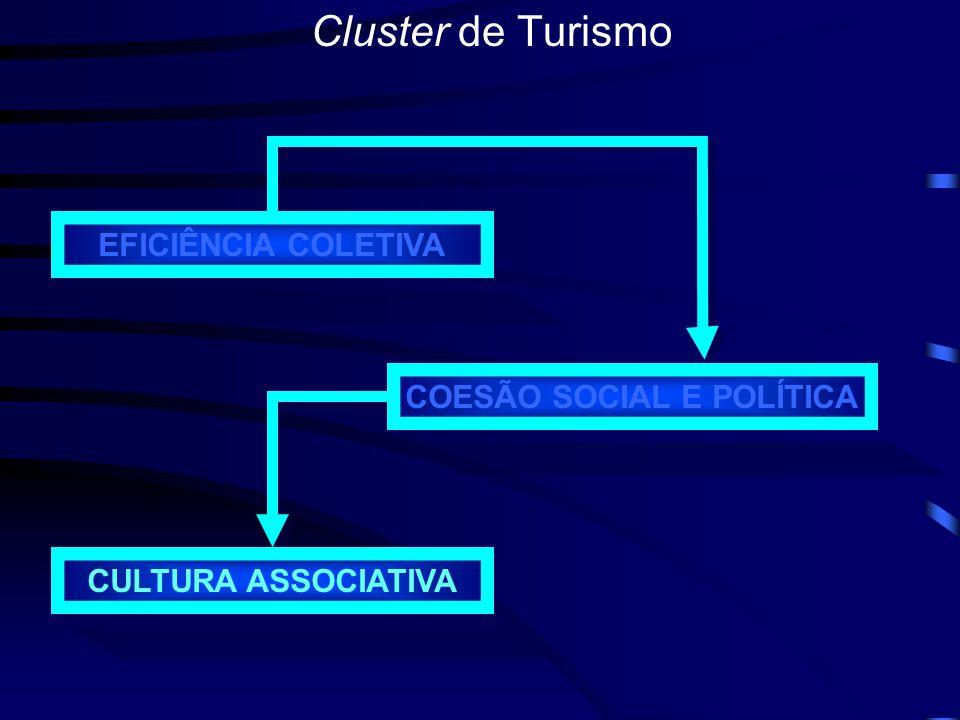 Cluster de Turismo Cadeia produtiva