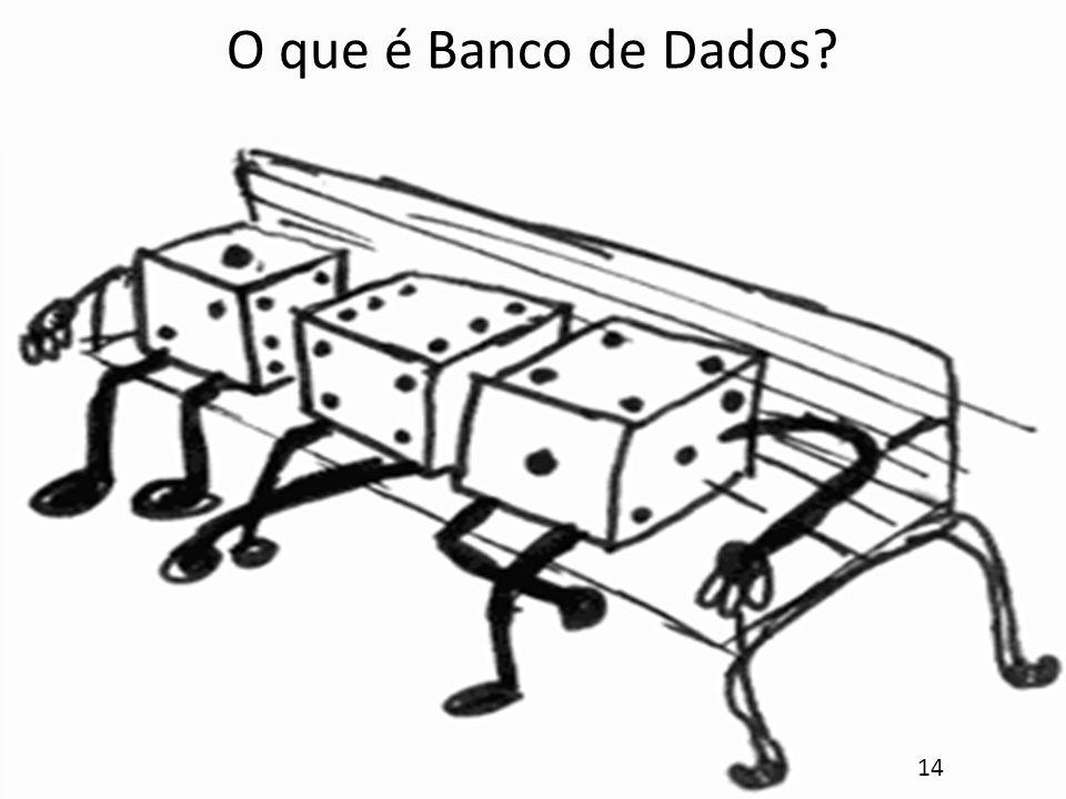 O que é Banco de Dados? 14