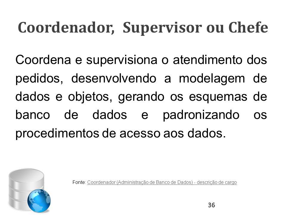 Coordenador, Supervisor ou Chefe Coordena e supervisiona o atendimento dos pedidos, desenvolvendo a modelagem de dados e objetos, gerando os esquemas