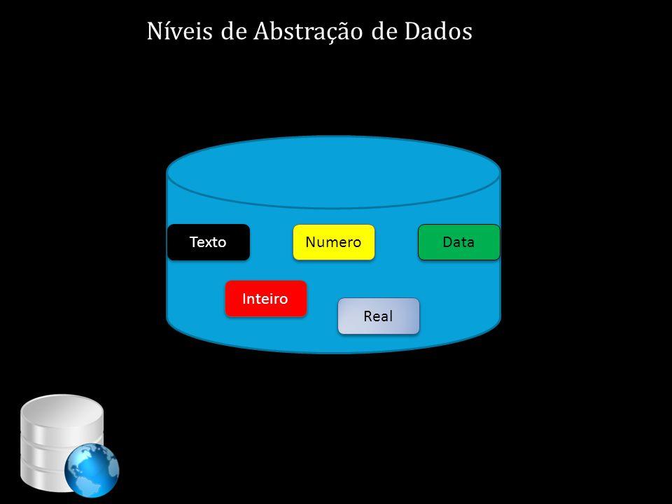 Níveis de Abstração de Dados Texto Inteiro Real Data Numero