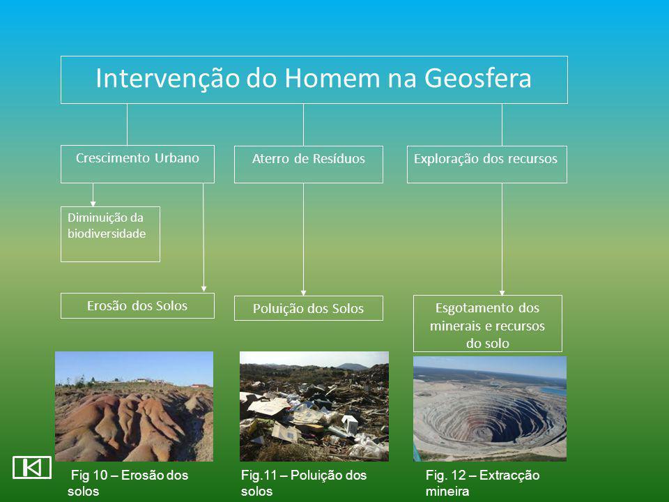 Intervenção do Homem na Geosfera Crescimento Urbano Aterro de ResíduosExploração dos recursos Diminuição da biodiversidade Erosão dos Solos Poluição d