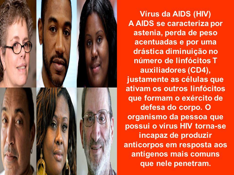 Vírus da AIDS (HIV) A AIDS se caracteriza por astenia, perda de peso acentuadas e por uma drástica diminuição no número de linfócitos T auxiliadores (CD4), justamente as células que ativam os outros linfócitos que formam o exército de defesa do corpo.