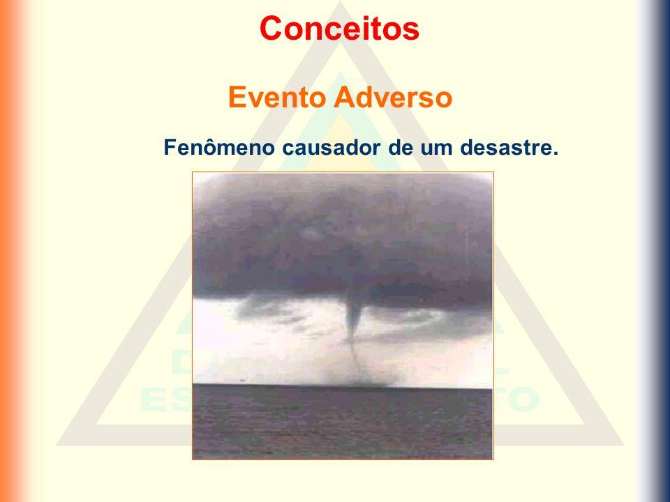 Classificação dos desastres Exemplos de Desastres Humanos Desertificação - Nordeste Efeito Estufa Redução da camada de Ozônio