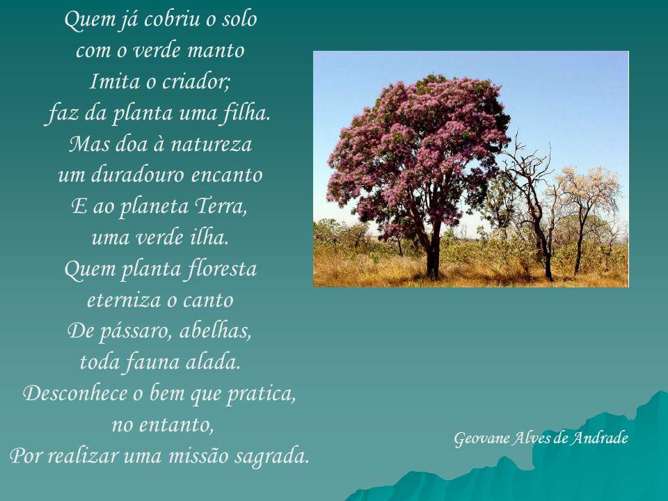 Quem já cobriu o solo com o verde manto Imita o criador; faz da planta uma filha. Mas doa à natureza um duradouro encanto E ao planeta Terra, uma verd