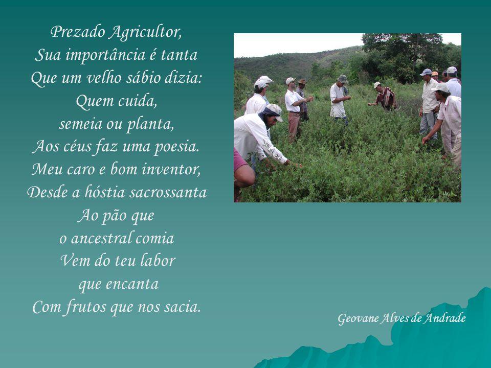 Prezado Agricultor, Sua importância é tanta Que um velho sábio dizia: Quem cuida, semeia ou planta, Aos céus faz uma poesia. Meu caro e bom inventor,