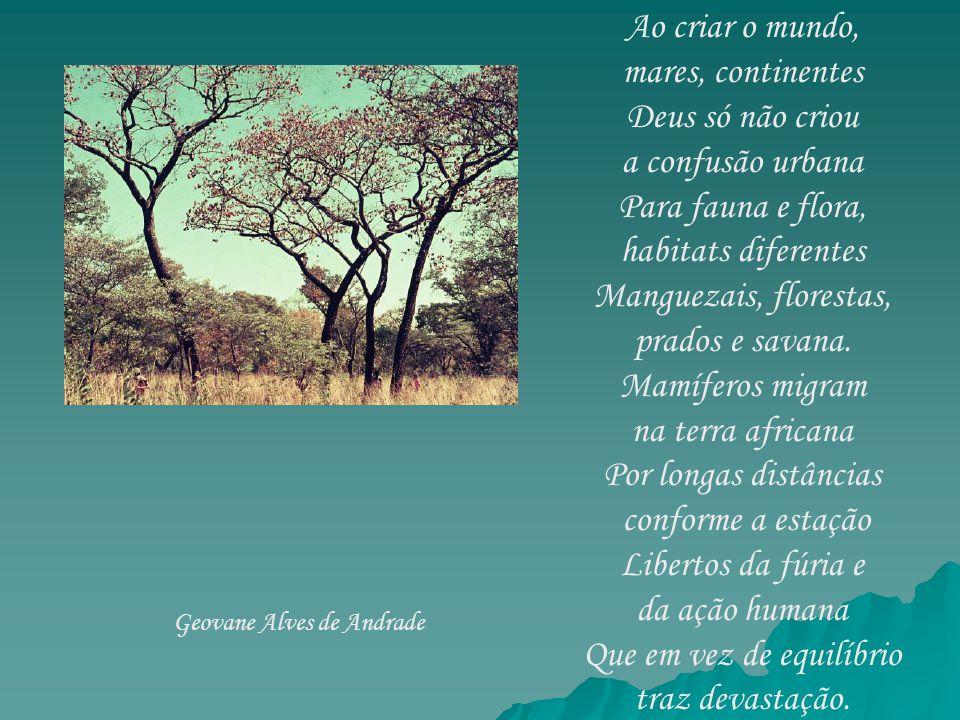 Por este Brasil tão vasto Do campo vejo sinais O Cerrado virou pasto E o pasto, canaviais.