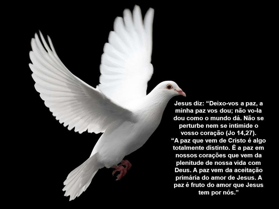 """""""Os inimigos não representam ameaça real para quem está em segurança. Ter a paz não é estar passivo, mas confiante. Quem tem a paz está sempre tranqui"""