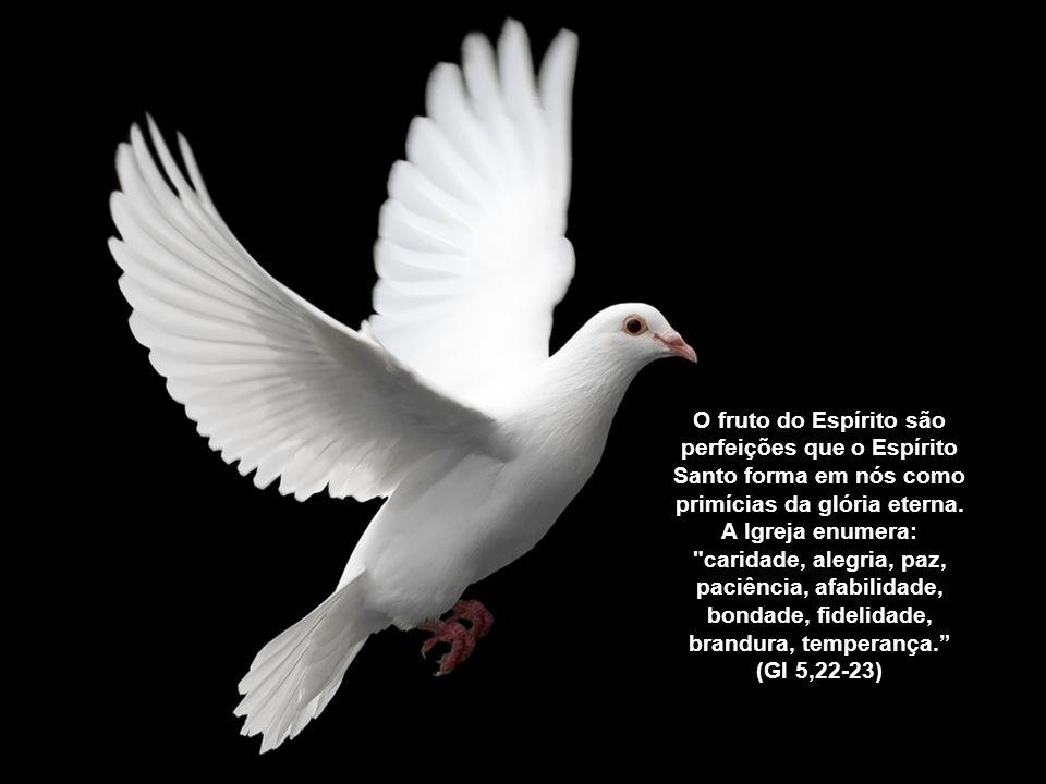 """""""O Espírito Santo nos guia para as alturas de Deus, para que possamos viver já nesta terra a semente da vida divina que está em nós."""""""