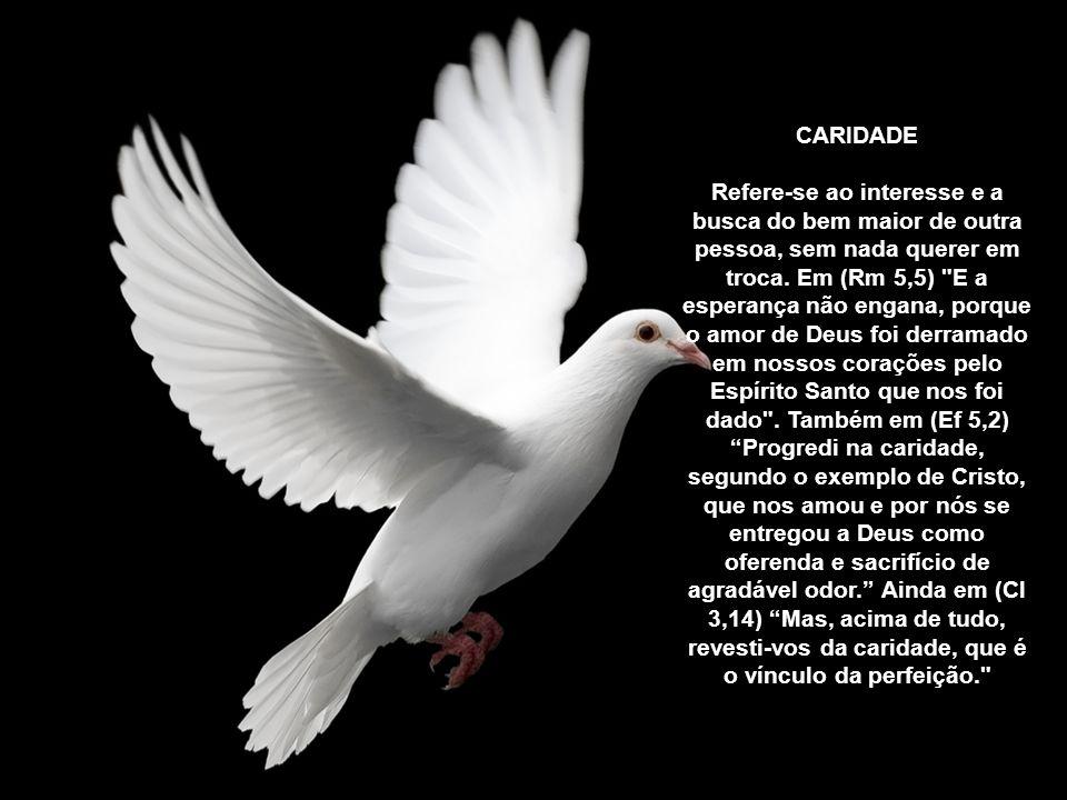 O fruto do Espírito são perfeições que o Espírito Santo forma em nós como primícias da glória eterna. A Igreja enumera: