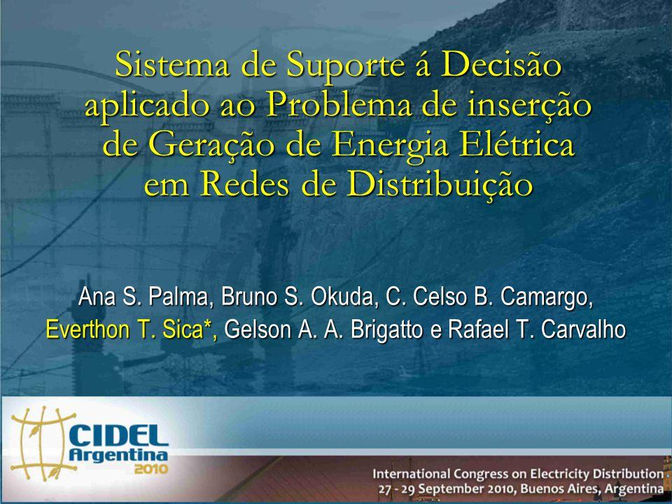 Ana S.Palma, Bruno S. Okuda, C. Celso B. Camargo, Everthon T.