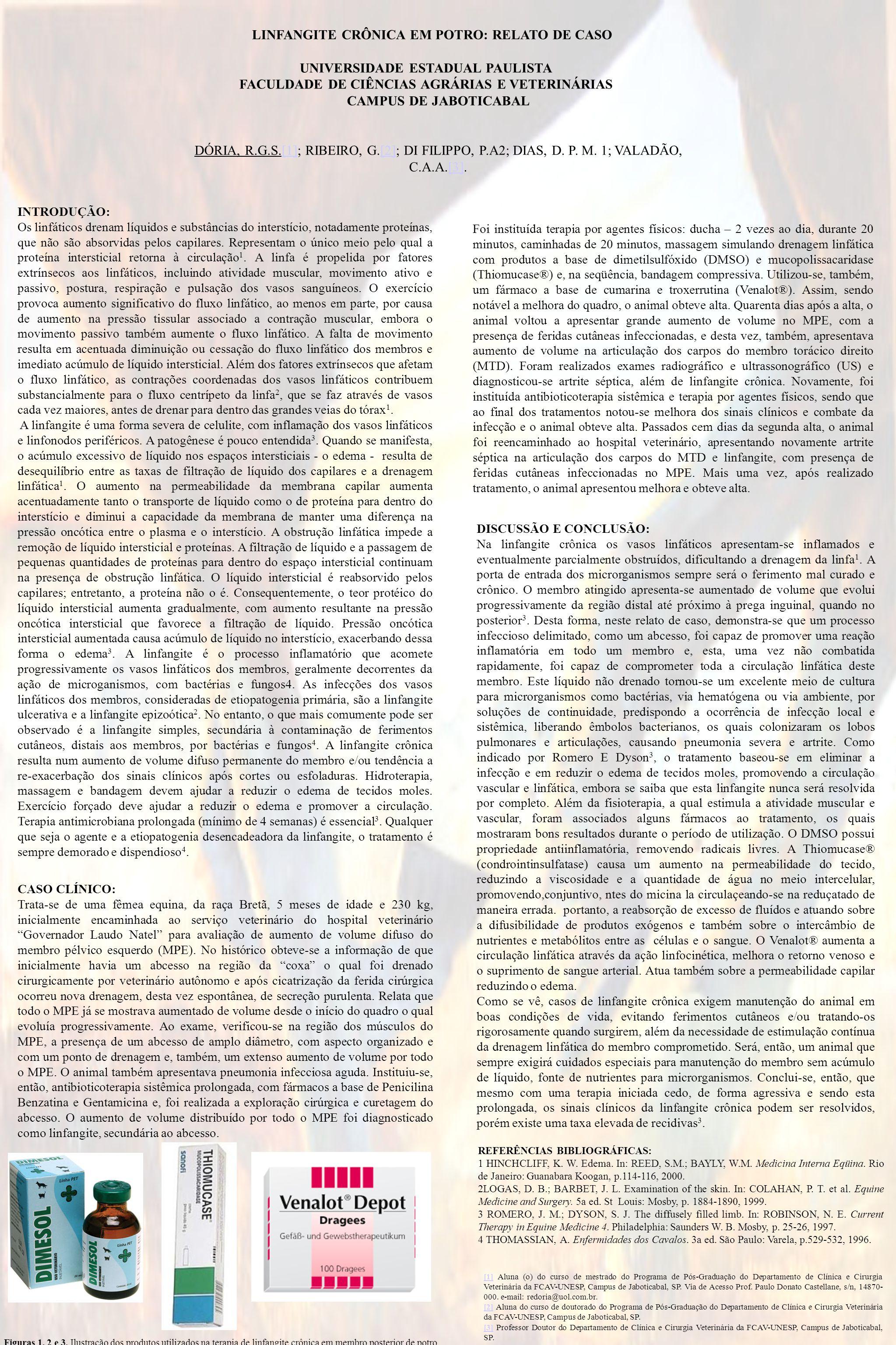 LINFANGITE CRÔNICA EM POTRO: RELATO DE CASO UNIVERSIDADE ESTADUAL PAULISTA FACULDADE DE CIÊNCIAS AGRÁRIAS E VETERINÁRIAS CAMPUS DE JABOTICABAL DÓRIA,