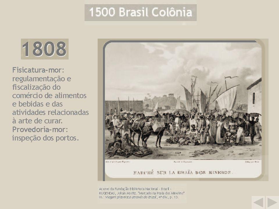 Saiba mais: visite a Mostra Virtual e tenha acesso ao texto completo de vários documentos da época.