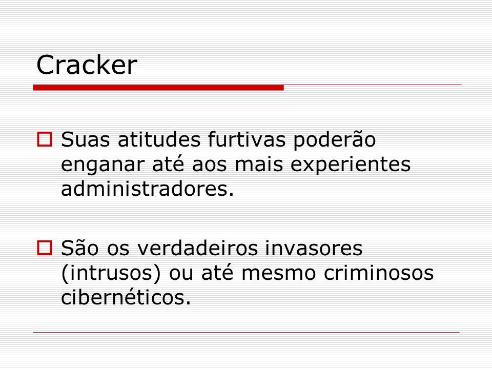 Cracker  Suas atitudes furtivas poderão enganar até aos mais experientes administradores.  São os verdadeiros invasores (intrusos) ou até mesmo crim