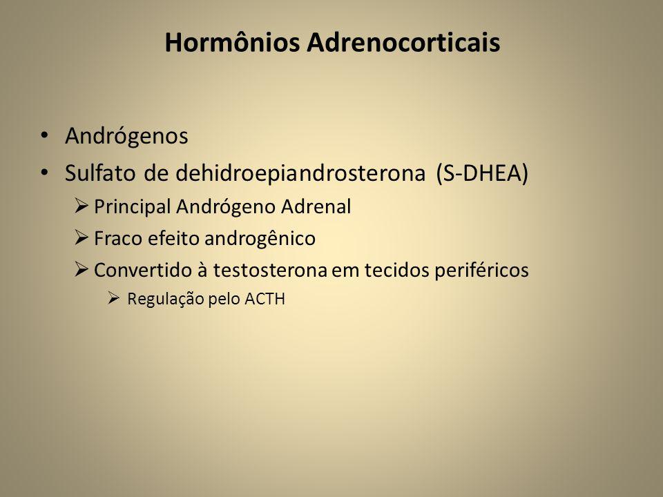 • Andrógenos • Sulfato de dehidroepiandrosterona (S-DHEA)  Principal Andrógeno Adrenal  Fraco efeito androgênico  Convertido à testosterona em tecidos periféricos  Regulação pelo ACTH Hormônios Adrenocorticais