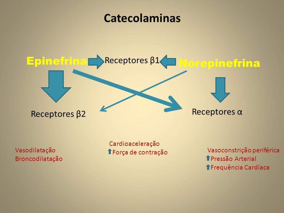 Catecolaminas Epinefrina Norepinefrina Receptores β2 Receptores β1 Receptores α Vasoconstrição periférica Pressão Arterial Frequência Cardíaca Vasodilatação Broncodilatação Cardioaceleração Força de contração