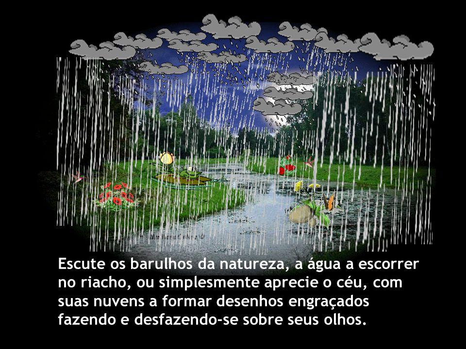 Escute os barulhos da natureza, a água a escorrer no riacho, ou simplesmente aprecie o céu, com suas nuvens a formar desenhos engraçados fazendo e desfazendo-se sobre seus olhos.
